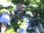 pixelite